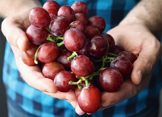 I'll be grape-ful