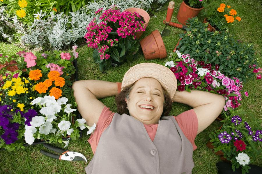 Enjoy the garden, fresh air and sunlight